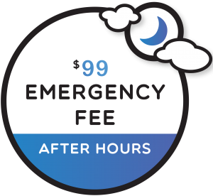 Image of the $99 emergency fee at Coddington Dental. Coddington Dental can help with many emergencies including a lost crown.